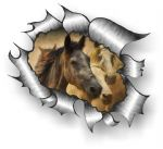 A4 Size Ripped Torn Metal Design With Running Horses Motif External Vinyl Car Sticker 300x210mm